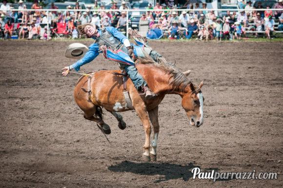 Dog Pound Rodeo 2014